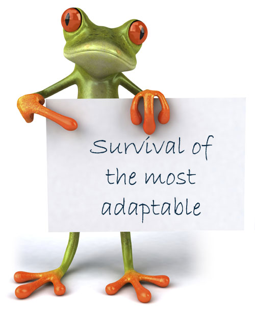 frog-survival-of-adaptable